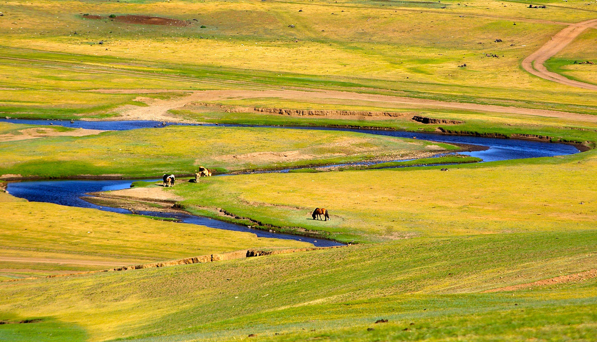 Mongolie - Immersion en terres nomades